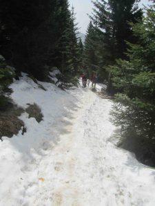 sneg na progi 2