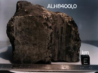 Marsovski meteorit ALH84001