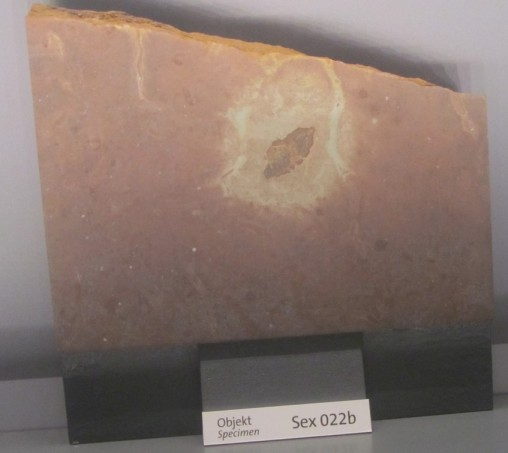 Fosilni meteorit iz Švedske