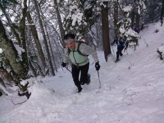 Vzpon na Kriško goro