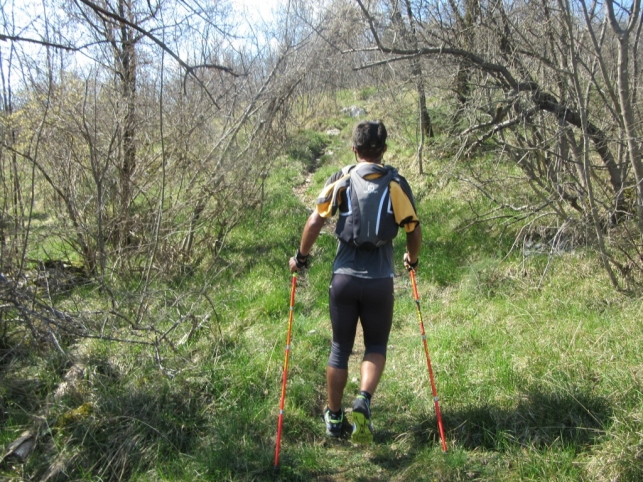 Učka trail (37) (1024 x 768)