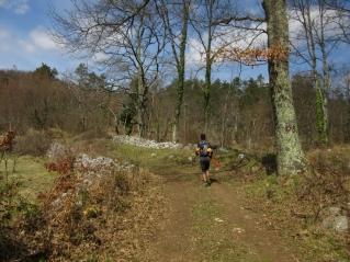 Učka trail (63) (1024 x 768)