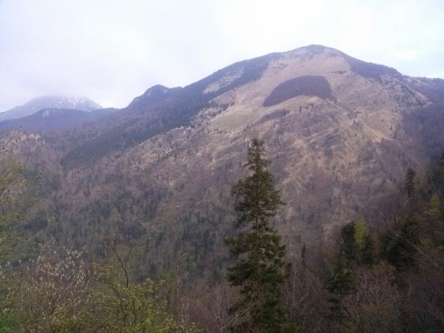 Srednji vrh s znamenitim Hudičevim borštom iz sv. Jakoba