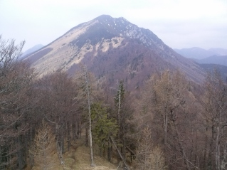 Srednji vrh z Javorjevega vrha