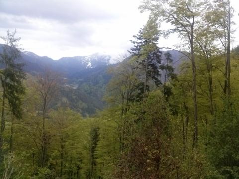 Pogled nazaj iz Dobrče na Storžič in Kriško goro