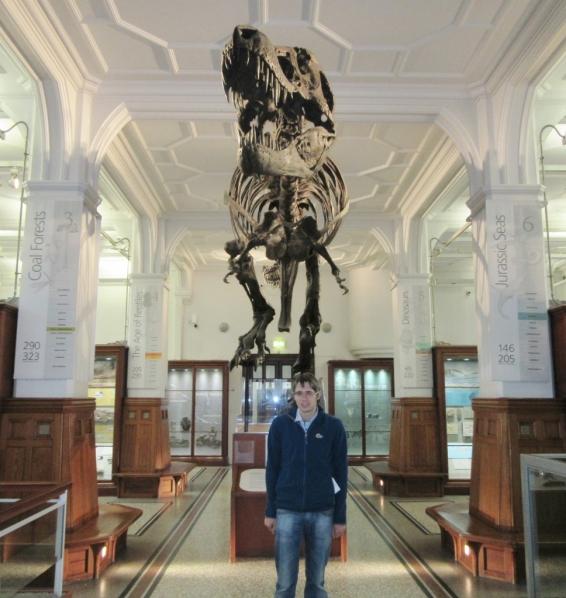 T-Rex v Manchesterskem muzeju