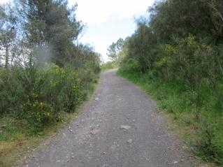 Pot z Vezuja proti Pompejem