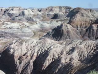 Vijolična puščava