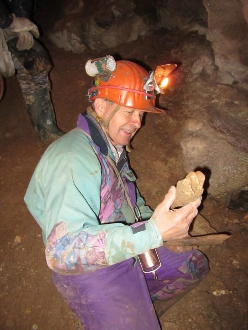 Kosti jamskega medveda