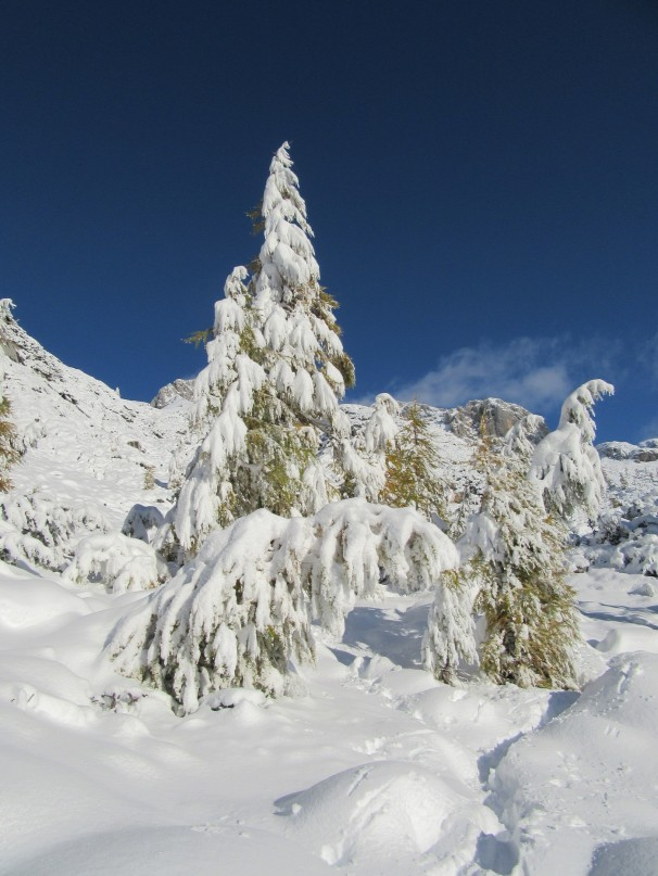 Snežna pravljica