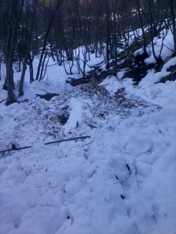 Snežne plazovine pod Vodiško planino ...Snežne plazovine pod Vodiško planino ...