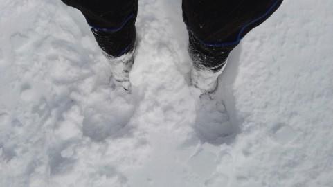 Ko je bilo še malo snega ...
