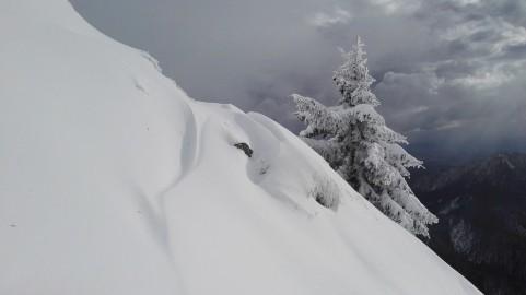 Snežni zamet