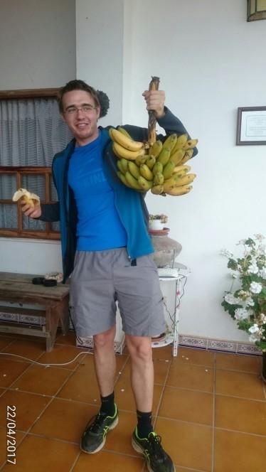 Banane so glavni izvozni produkt La Palme