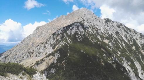 Pogled z Bašeljskega vrha na Storžič