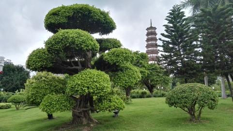 Park Chigangta
