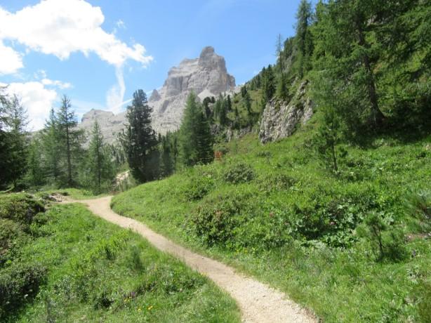 Cortina trail (81)