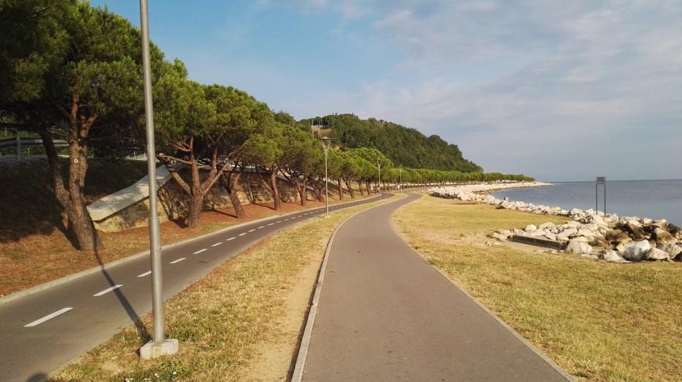 Obalna cesta Koper- Piran