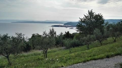 Izola je bila nekoč otok
