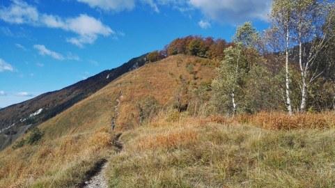 Planjava - zahodni predvrh Kamniškega vrha