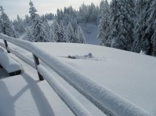 Zimske vragolije 4
