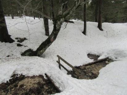 Smuka skozi gozd in čez mostičke. Nekatere sem zadel, druge ne.