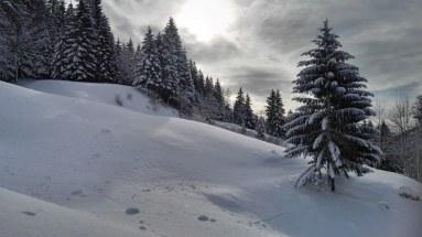 Zimska idila pri Matizovcu