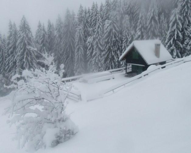 Lovska koča na Bistriški planini
