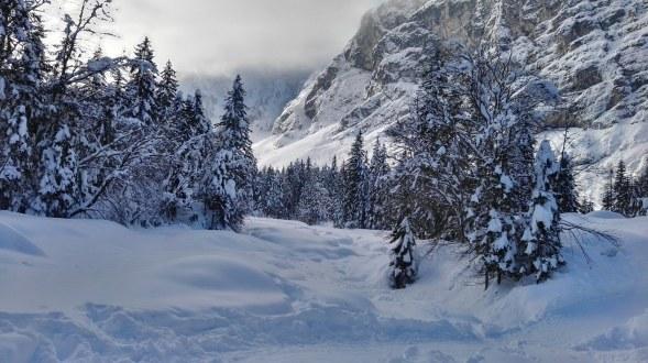 Snežna idila v Krnici