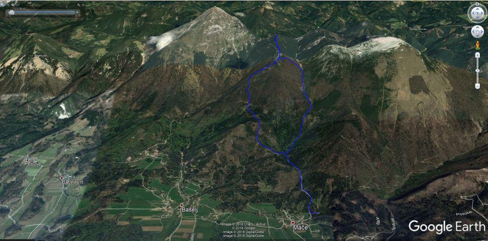 Smuka z Bašeljskega vrha