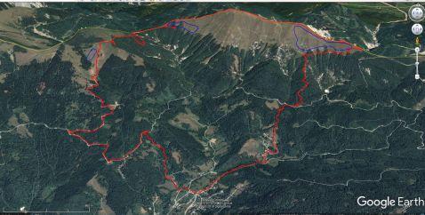 GPS sled. Z modro barvo so označena trenutna rastišča narcis