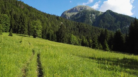 Planina Spodnja Grintovca in Tosc